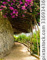 Walking path covered by tropical flowers 33693436