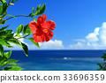 오키나와 푸른 바다와 푸른 하늘과 붉은 히비스커스 33696359