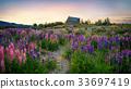 church, flower, blossom 33697419
