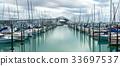 Auckland Harbour Bridge in Auckland, New Zealand 33697537