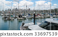 Yacht at Harbour in Auckland, New Zealand 33697539