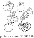 Vector set of different hand drawn fruits 33701336