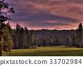 Sequoia Meadow 33702984
