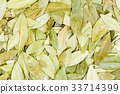 Dry leaves of the vinca for medical use. 33714399