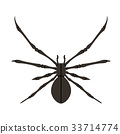 Spider silhouette in black. 33714774