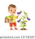 Cute little boy picking eggplants in the garden 33738387