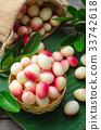 Bengal Currants, Carandas-plum, Carissa carandas 33742618