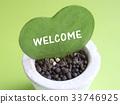 心 植物 植物学 33746925