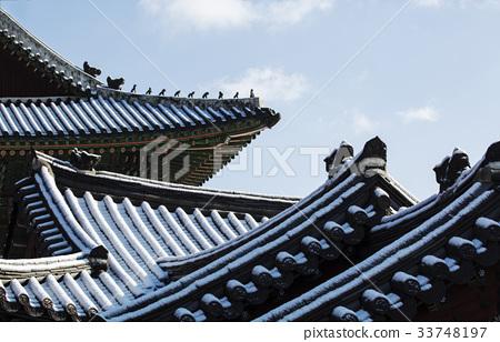 기와지붕,창덕궁(사적122호),종로구,서울 33748197