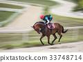 騎馬,未加工的種馬大農場,未加工的糖,高陽市,京畿道 33748714