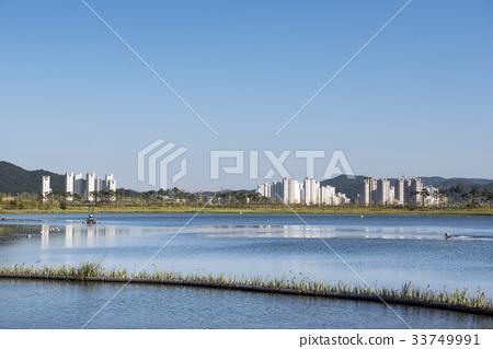 세종호수공원,세종시,충남 33749991
