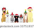animal, animals, pet 33751937