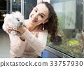 female customer watching fluffy chinchilla in petshop 33757930