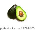 avocado, alligator, pear 33764025