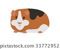 guinea pig cartoon 33772952