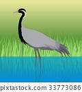 Demoiselle Crane Flat Design Vector Illustration 33773086