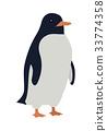 penguin, animal, bird 33774358