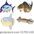 矢量 鱼 海洋 33781146