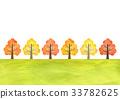 가을, 가로수, 나무 33782625