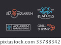 seafood, shrimp, jellyfish 33788342