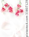 카네이션, 꽃, 플라워 33807129