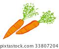 胡蘿蔔 水彩 水彩畫 33807204