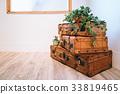 手提箱 地面 植物 33819465