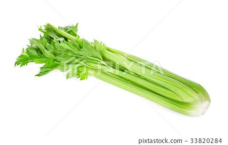 Celery isolated on white background 33820284