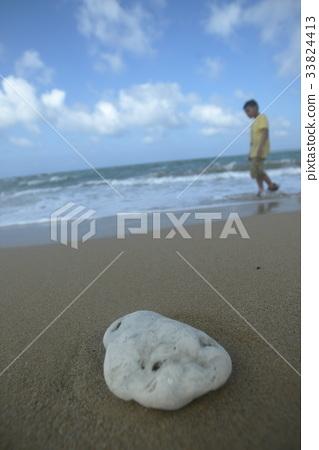 沙灘 33824413