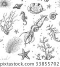 Underwater Plants and Animals Pattern 33855702