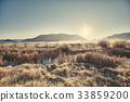 sunrise, reed, background 33859200