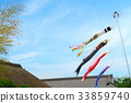 carp streamer, japanese carp-shaped windsock, blue sky 33859740