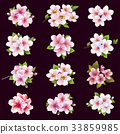 Set of cherry and apple blossom, sakura tree flowers 33859985