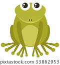 Green frog on white background 33862953