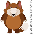 Brown wolf on white background 33862975