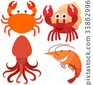 Four types of sea animals 33862996