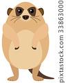 Meerkat with round body 33863000