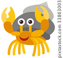 Hermit crab on white background 33863003