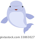 Beluga whale on white background 33863027