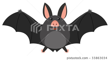 Happy bat on white background 33863034