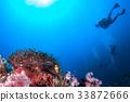 珊瑚 海洋 海浪 33872666