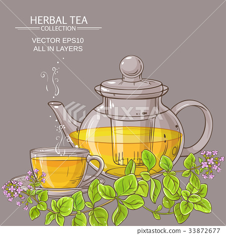 cup of oregano tea in teapot 33872677
