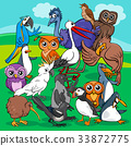 birds group cartoon illustration 33872775