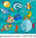 fish cartoon characters group 33872818