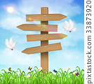 Wooden direction board on grass sky background 33873920