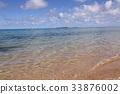 新喀里多尼亚 海滩 椰子树 33876002