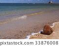 新喀里多尼亚 海滩 椰子树 33876008