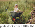 cute little boy with wheelbarrow 33882161