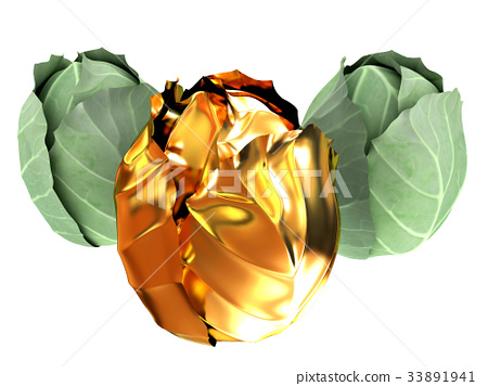green cabbage and gold cabbage isolated on white 33891941