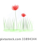 Water colors. Simple red poppies in field 33894344